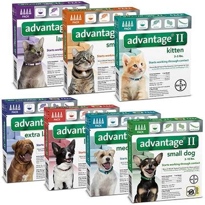 advantage 2 for dogs advantage ii for dogs cats 100 satisfaction guaranteed 1800petmeds