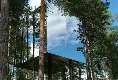 suspended swedish tree hotel reflects natural environment tree hotel sweden