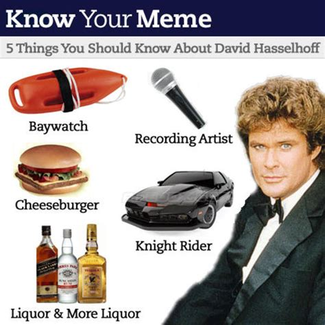 David Hasselhoff Meme - image 22460 david hasselhoff drunk know your meme