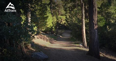 trails  san bernardino national forest california