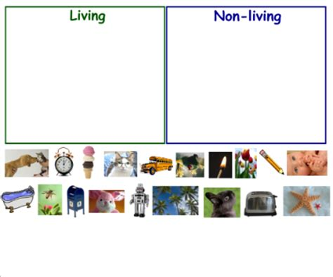 image gallery non living animals