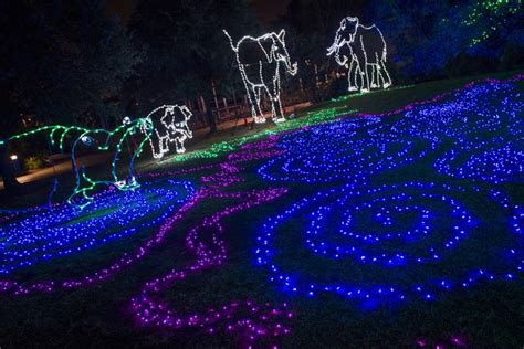 Houston S Best Holiday Lights It S Hard To Beat This Zoo Of Lights Houston