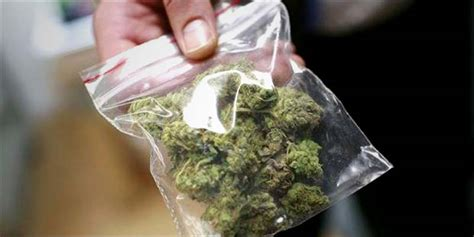 How Do I Search For On By City How Do I Find A Dealer In A New City Marijuana