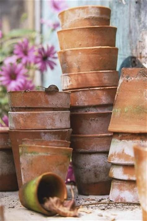 weathered clay the best garden joys