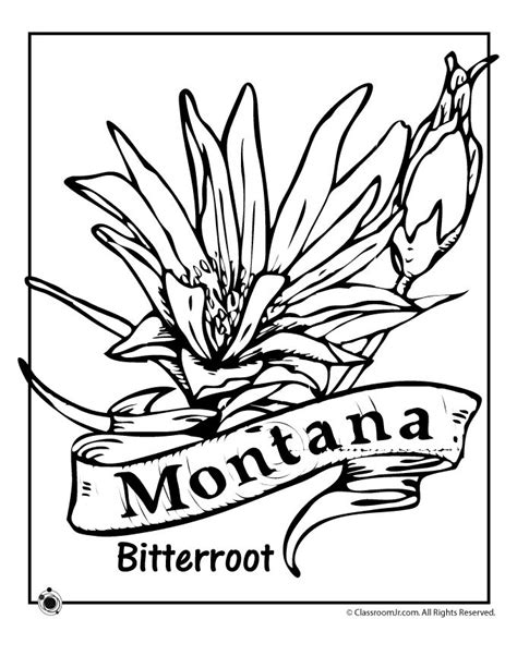 35 Best Ss Montana Images On Pinterest Montana Kitchens And 50 States Montana Coloring Pages