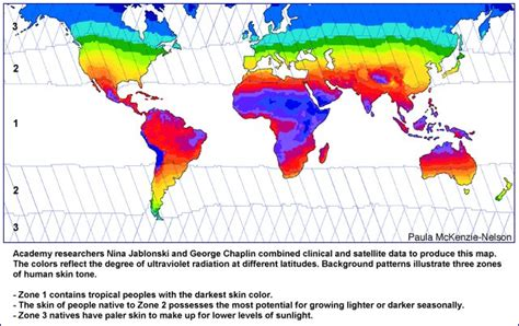skin color map human skin color map
