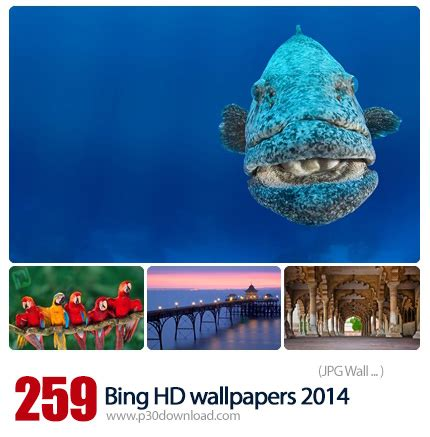 wallpaper search engine download a variety of different wallpapers for bing 2014 search