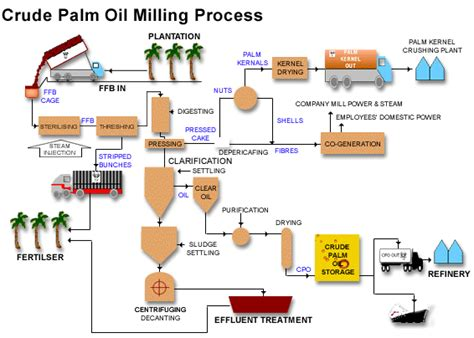 proses membuat minyak kelapa sawit palm oil mill plant process palm oil technology