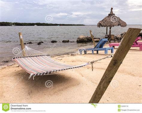 Water Hammock Hammock By The Water In Florida Stock Photo Image