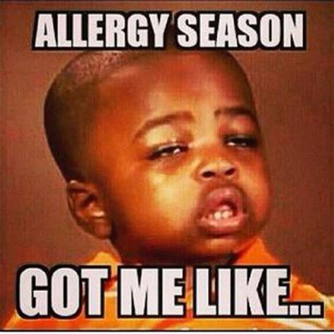 Allergy Meme - season jokes kappit