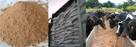 Tepung Tulang Sebagai Pakan Ternak jual bungkil kelapa sawit bungkil sawit palm kernel meal