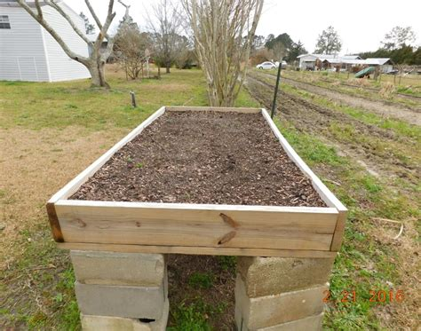 raised beds raised bed garden soil then a 2 cu ft bag of special