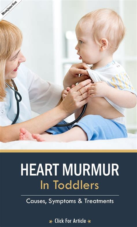 symptoms of murmur in dogs 17 best ideas about murmur on cardiac nursing sounds and