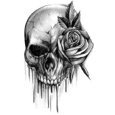 imagenes de calaveras rap dibujo calavera con una rosa drawings photos