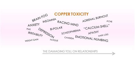 Detox Excess Copper by 25 Best Ideas About Copper Toxicity On