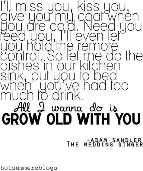 Kitchen Sink Lyrics Genius Okayimage Quot Grow With You Quot Adam Sandler Lyrics Lyrical Genius