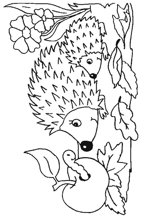 baby hedgehog coloring page mom and baby hedgehog coloring page color book