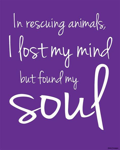 rescue quotes best 20 animal rescue quotes ideas on rescue dogs animal rescue and