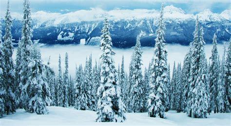brag worthy bc winter forecast news 1130