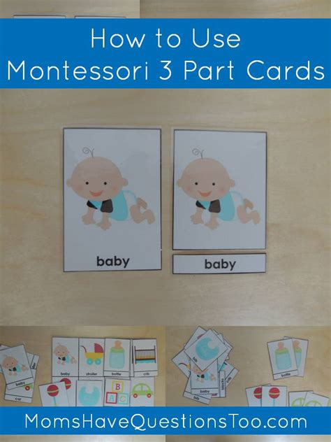 free printable montessori three part cards how to use montessori 3 part cards