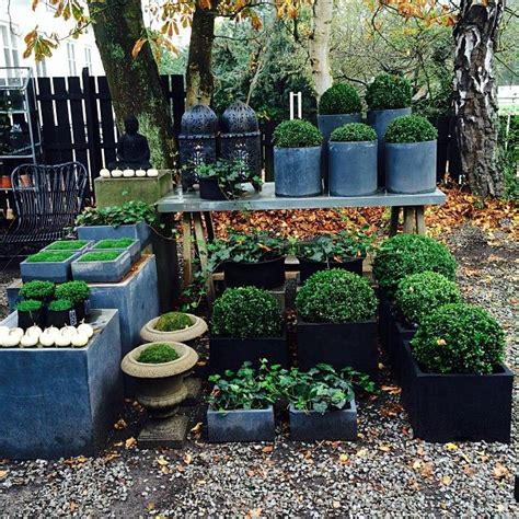 Garden Centre Decorations by 1474 Best Images About Garden Center Ideas On