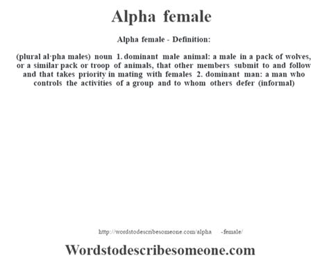 alpha definition alpha definition alpha meaning words to describe someone
