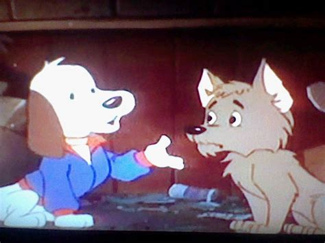 pound puppies cooler episode 26 cooler come back pound puppies 1986 wiki fandom powered by wikia