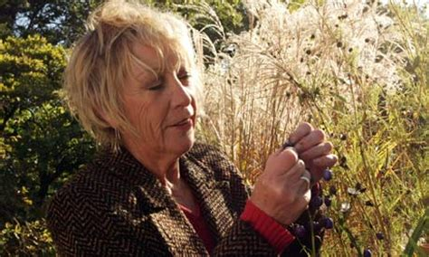 carol klein cottage garden tv s carol klein closes nursery after neighbours kick up a
