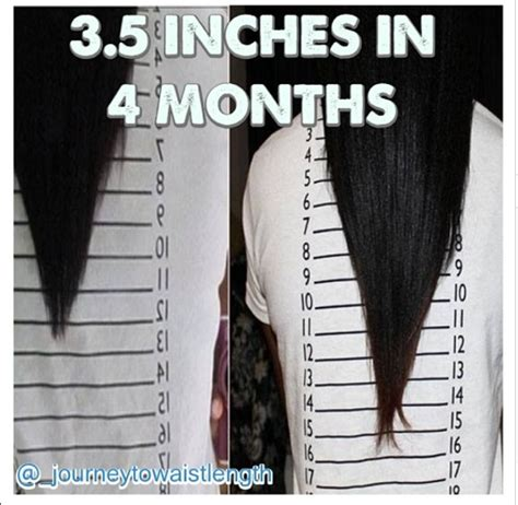 How Many Inches Will My Hair Grow In 10 Months