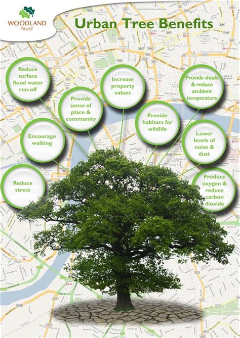 advantages of design for environment what have our urban trees ever done for us formerly