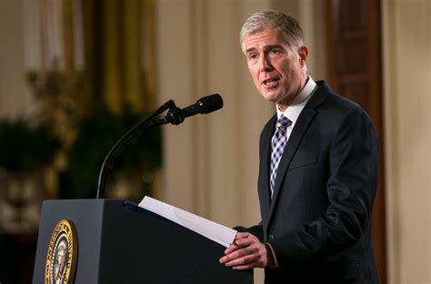 neil gorsuch new york times neil gorsuch and the search for the supreme court