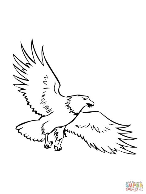 eagle template soaring bald eagle coloring page free printable coloring