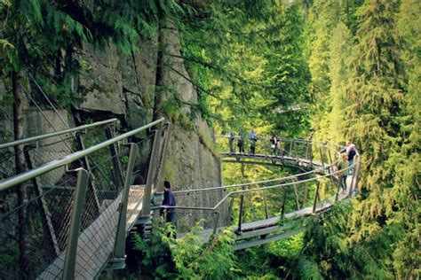 experiencing canadas sacred forest  capilano vancouver