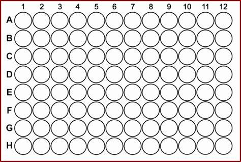 96 well plate template word 96 well plate template seogreat info