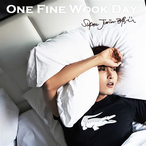 download lagu one fine day lets download gt gt ryeowook solo album fanmade nec