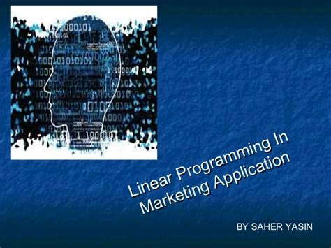 linear programming in market application