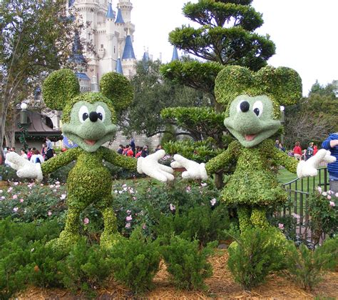 the act of disney topiary mouse ears