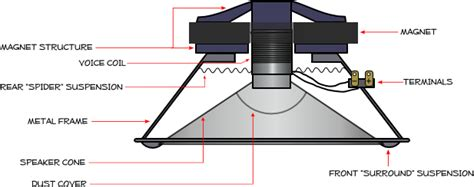 subwoofer components diagram how speakers work