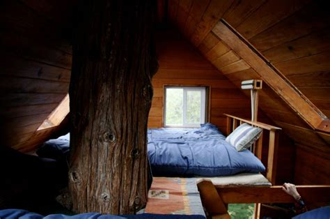 tree house interior amazing tree house hotels eccentric hotels
