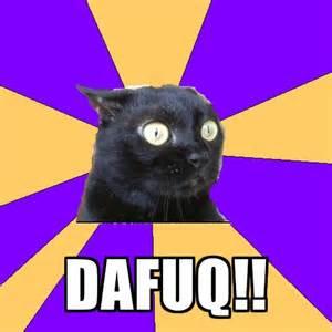 Dafuq cat meme dafuq share this meme on