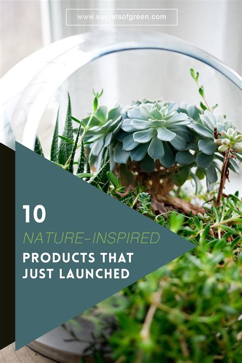 10 quot quot nature inspired 10 nature inspired products that just launched secrets