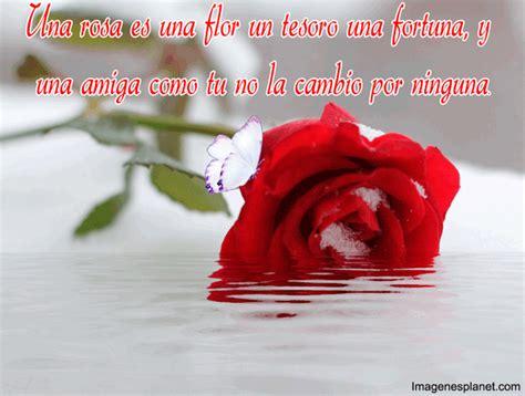 imagenes flores y frases imagenes gif animadas de rosas con frases de amor eu amo