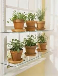 Herbs For Kitchen Window Sill 25 Best Ideas About Window Herb Gardens On