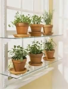 Window Sill Herbs Designs 25 Best Ideas About Window Herb Gardens On Kitchen Herbs Diy Herb Garden And