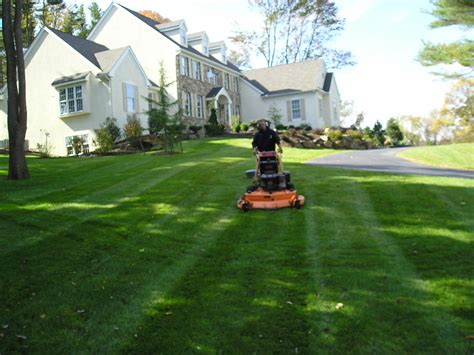 Lawn Care by Lawn Care Rollingwood Tx Wellspring Landscape Services