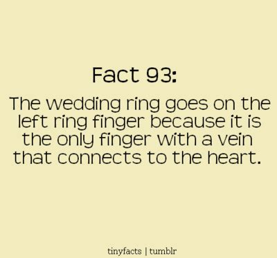 Wedding Facts by Something Borrowed Fact Friday