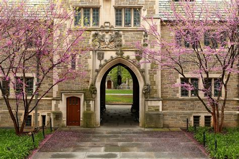 best us universities best universities in the united states unveiled study