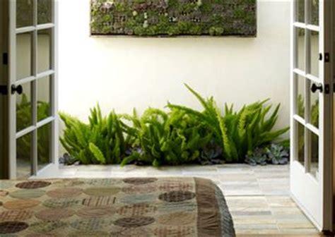 grandi arredi piante in casa