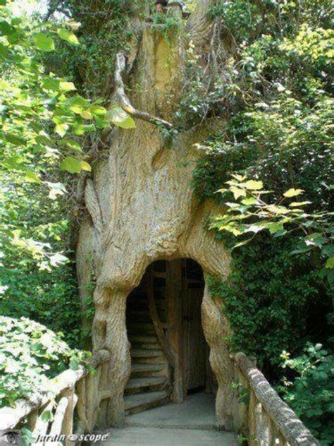 cool tree coolest tree house cool houses and house stuff trees tree and