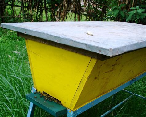 kenyan top bar beehive plans the peace bee farmer top bar hives